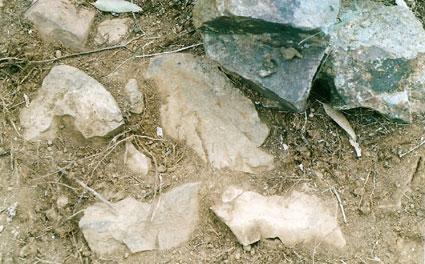 Detail large stone arrangement