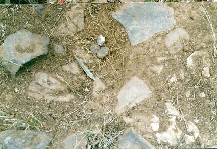 Detail large arrangement