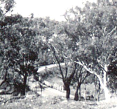 Westlake 1950s