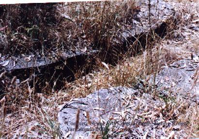 Cocrete Trench